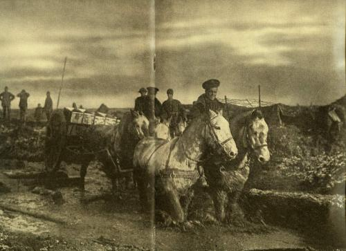 A black-and-white photograph of four horses pulling a munitions wagon along a muddy road.