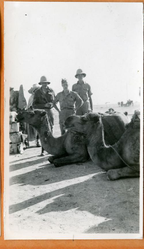 A black-and-white photograph of Gurney Smith with a camel.