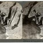 A black and white photograph of a stereoscopic pair of images depicting a team of sappers at work.